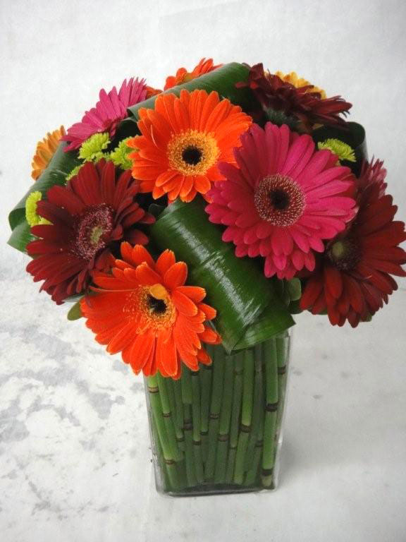 Square Glass w/ Gerber Daisies, Horsetail, Kermits